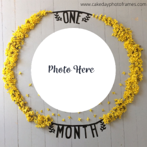 one month completed photo frame online